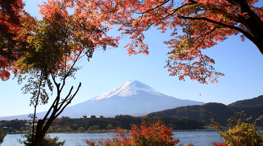 expatriate in japan Expatriates discussion forum about living in japan by allo' expat for expatriate, traveler or japann to chat with the japan expats.