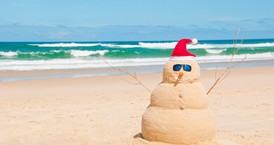 moving to australia importing christmas decorations - Christmas Decorations Australia