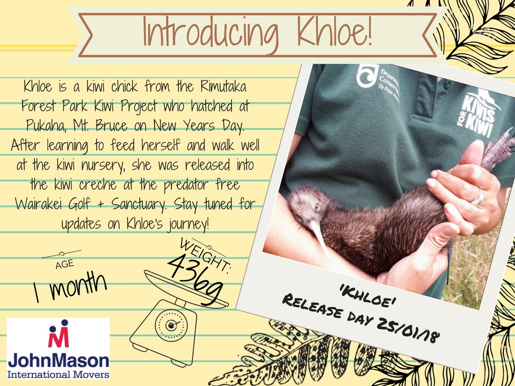 Moving to New Zealand Adopt a kiwi