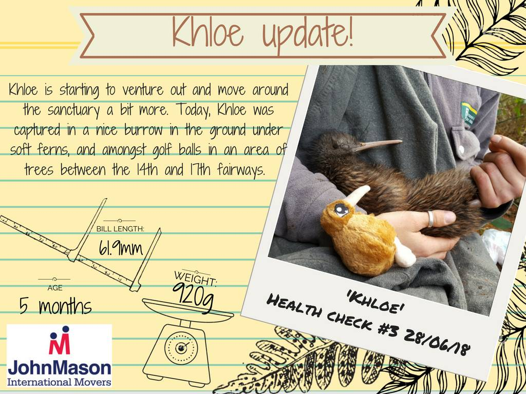 Khloe Kiwi update four